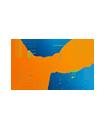 pros_logo