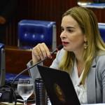 Assembleia Legislativa instala Comissões dos Direitos Humanos e das Mulheres
