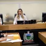 Comissão aprova projeto que prioriza atendimento médico a mulheres vítimas de violência doméstica